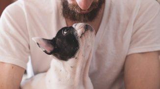 beneficios-para-mascotas-dueño-de-una-mascota